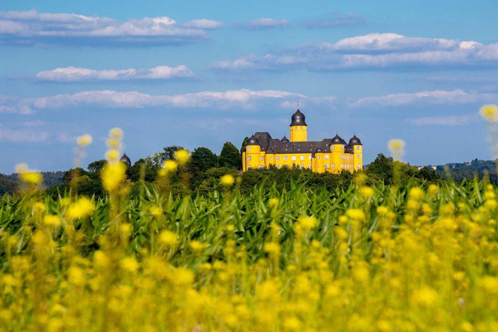 Wandbild Schloss Montabaur