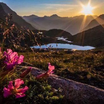 Wandbild Acrylglas: Sonnenaufgang in denAlpen
