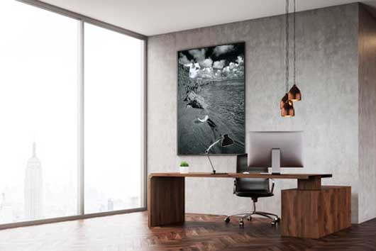 Wandbild auf Alu-Dibond: eine Feder liegt im Priel. Das Wattenmeer.