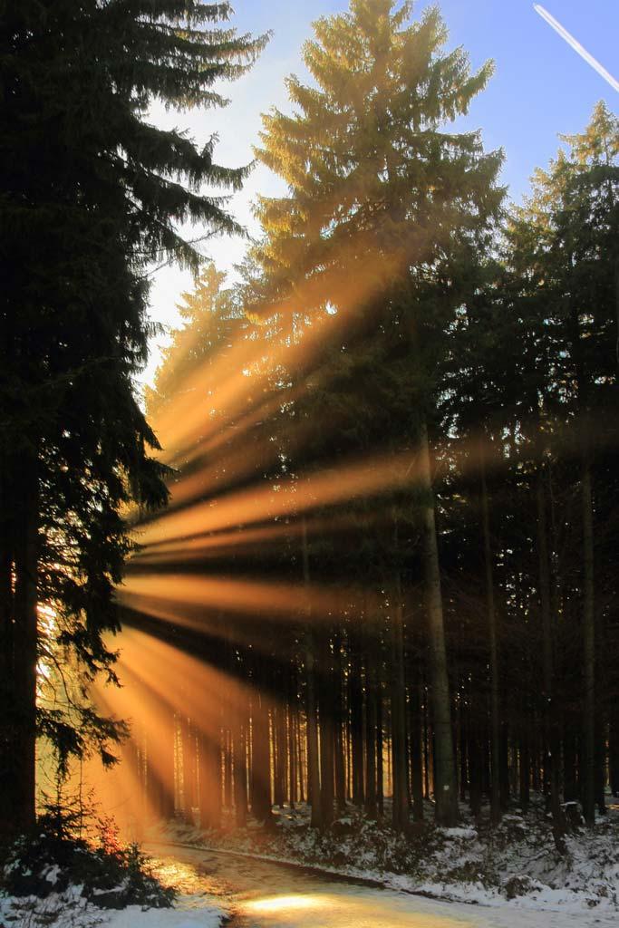 Wandbild Sonnenstrahlen im Westerwald
