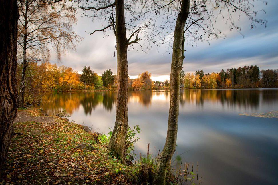 Wandbild Westerwald: der Erlenhofsee im Kannenbäckerland