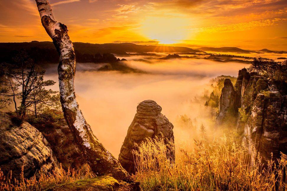 Wandbild: Nebel im Elbsandsteingebirge bei Sonnenaufgang.